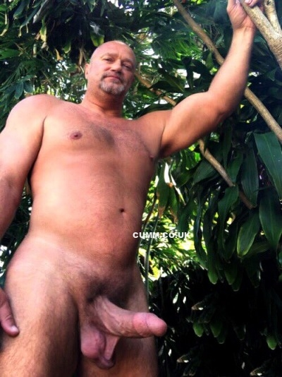 Daddy Cock